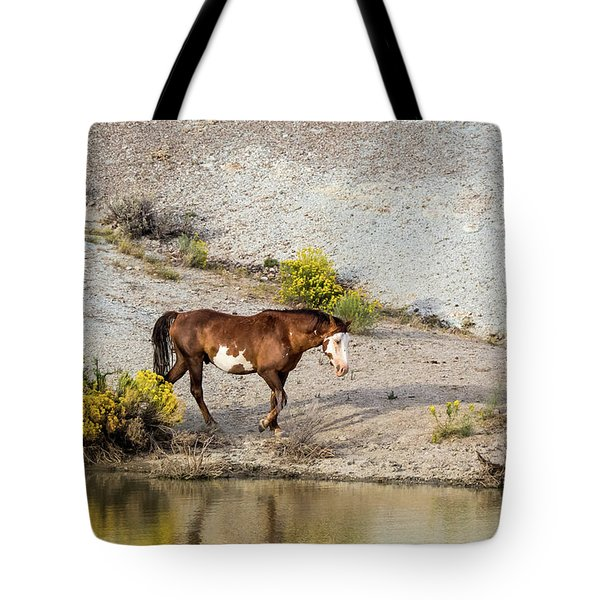 Wild Stallion Of Sand Wash Basin, Raindance Tote Bag