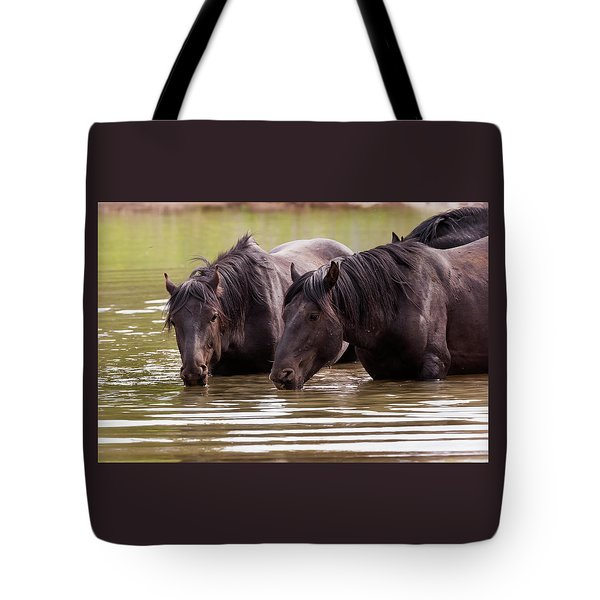 Wild Stallions At The Water Hole Tote Bag