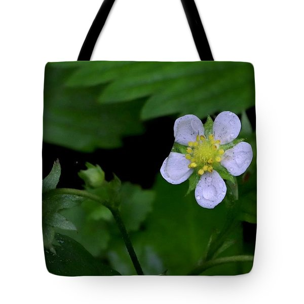 Wild Strawberry Blossom And Raindriops Tote Bag