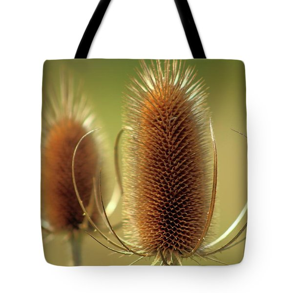 Wild Teasel Tote Bag by Bruce Patrick Smith