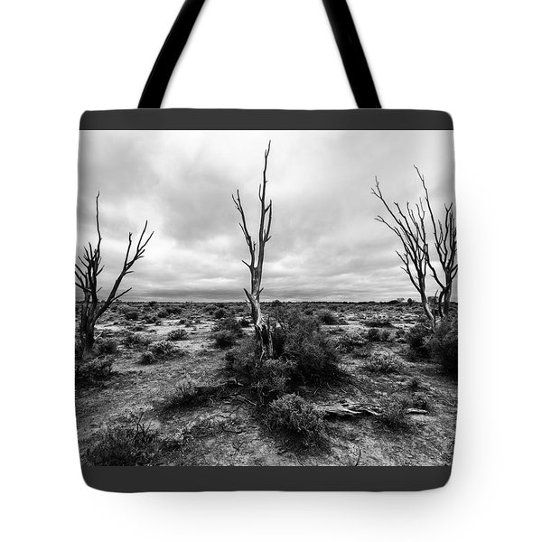 Tote Bag featuring the photograph Wild Trinity by Julian Cook