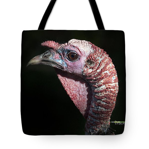 Wild Turkey Tote Bag by Diane Giurco