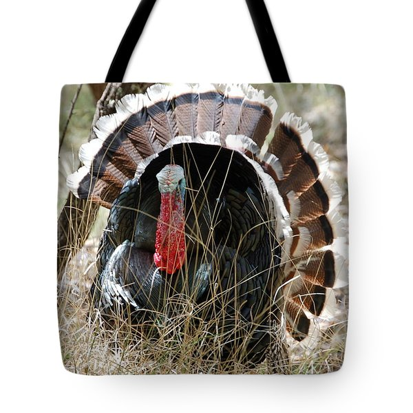 Tote Bag featuring the photograph Wild Turkey by Frank Stallone