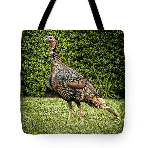 Wild Turkey Tote Bag by Kelley King