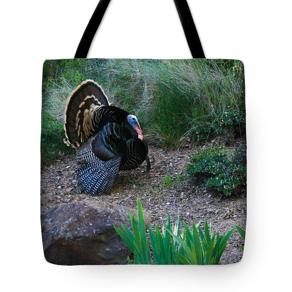 Wild Turkey Tote Bag by Mark Barclay