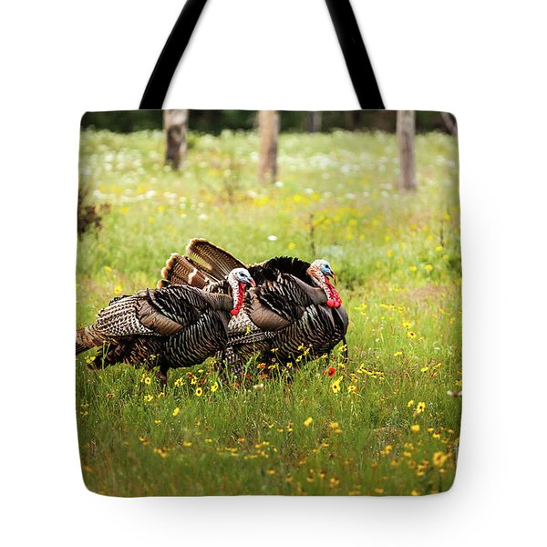 Wild Turkey's Dance Tote Bag