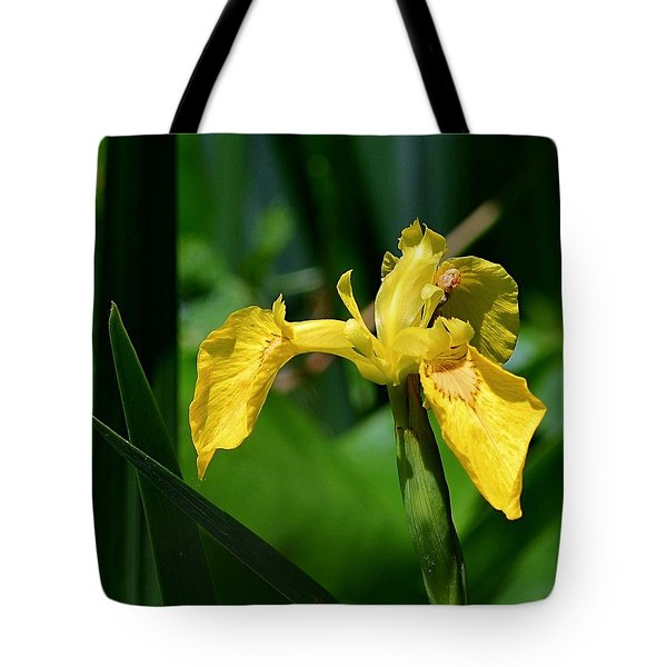 Wild Yellow Iris Tote Bag