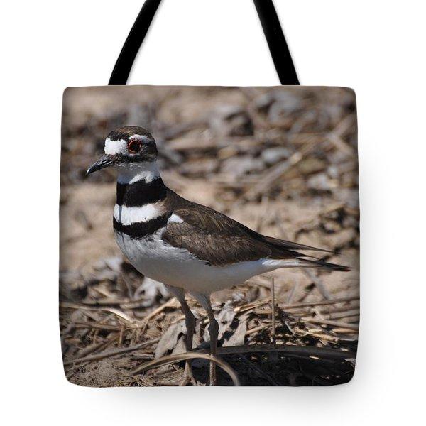 Wildbird Killdeer Mother Tote Bag