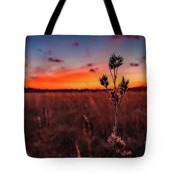 Wildfire Tote Bag by Rivers Rudloff