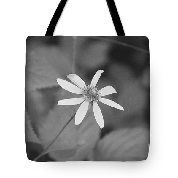 Tote Bag featuring the photograph Wildflower by Eric Liller