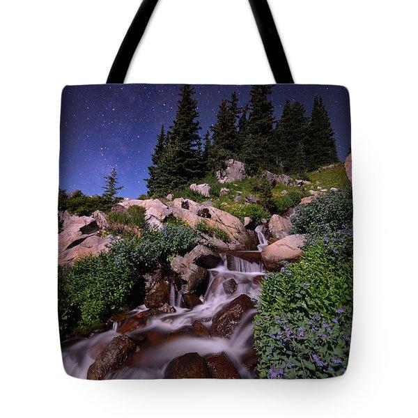 Wildflower Finale In The Indian Peaks Tote Bag