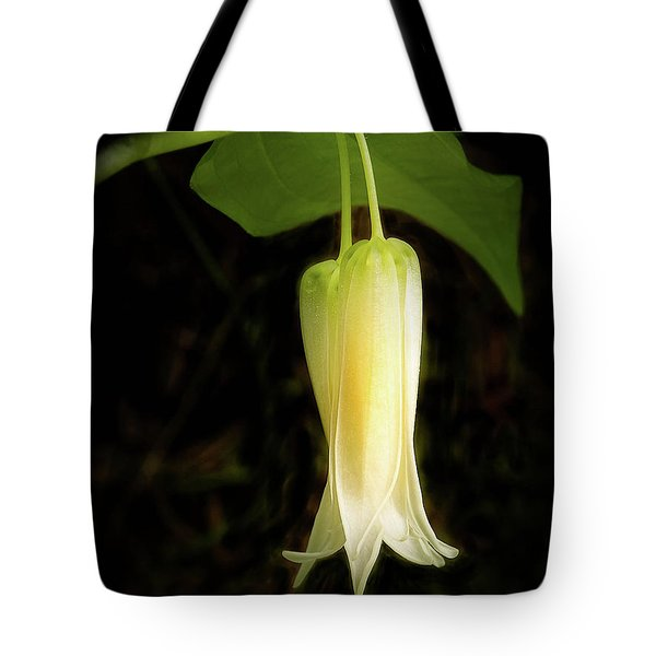 Smiths Fairybell Wildflower Tote Bag