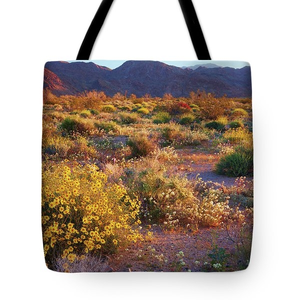 Tote Bag featuring the photograph Wildflower Meadow At Joshua Tree National Park by Ram Vasudev