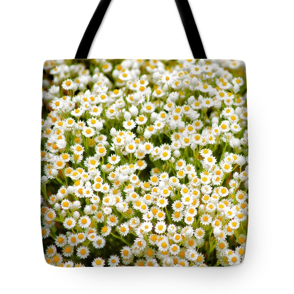 Wildflowers Tote Bag by Holly Kempe