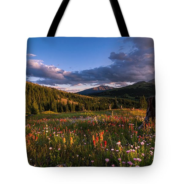 Wildflowers In The Evening Sun Tote Bag