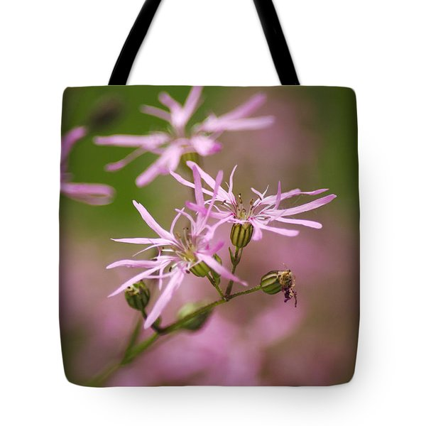 Wildflowers - Ragged Robin Tote Bag by Christina Rollo