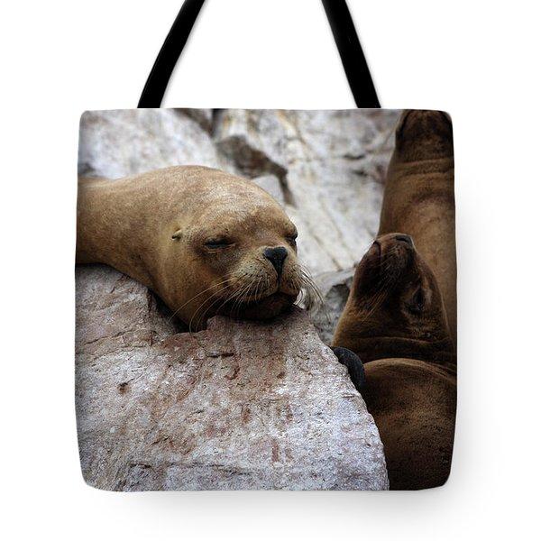 Wildlife Of The Ballestas Islands Tote Bag by Aidan Moran