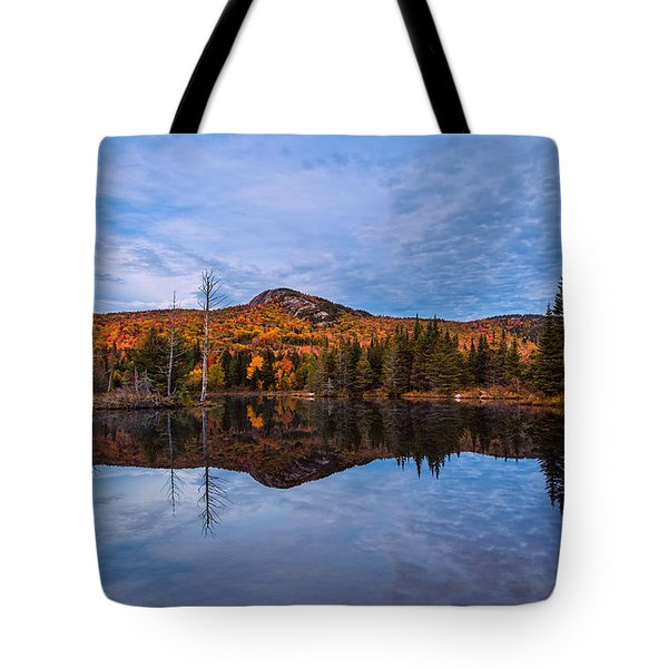 Wildlife Pond Autumn Reflection Tote Bag