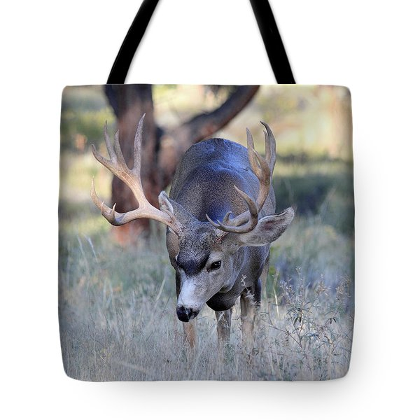 Wildlife Wonder Tote Bag