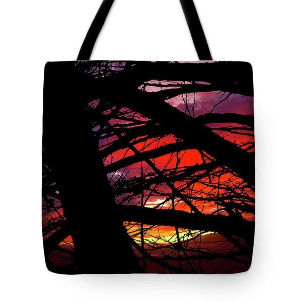 Wildlight Tote Bag