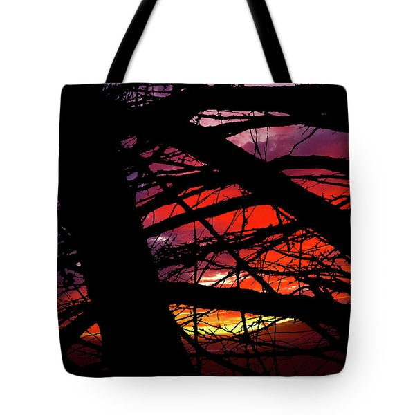 Wildlight Tote Bag