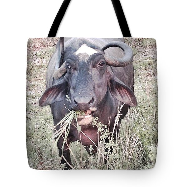 Wilds Of Buffalo Tote Bag