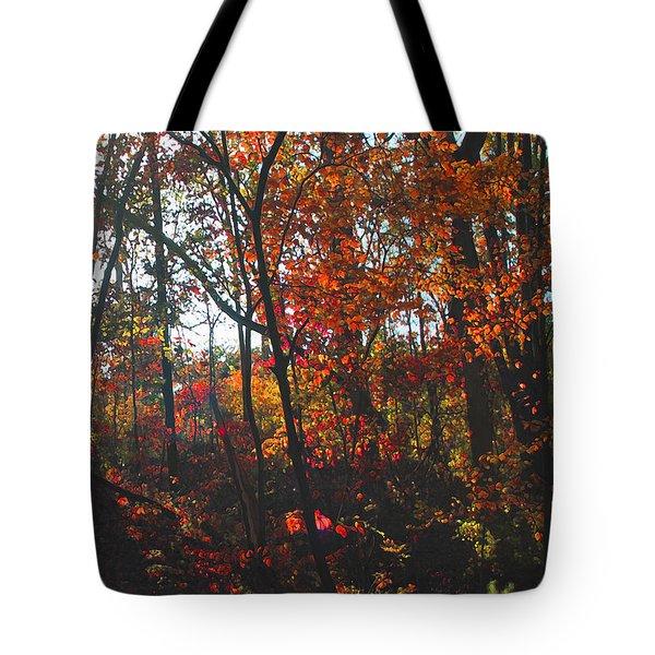 Wildwood Missouri Tote Bag