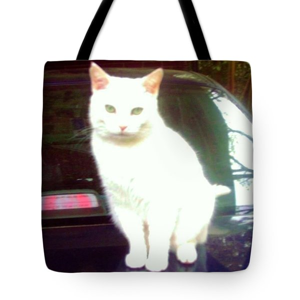 Will Wash Car For Treats Tote Bag