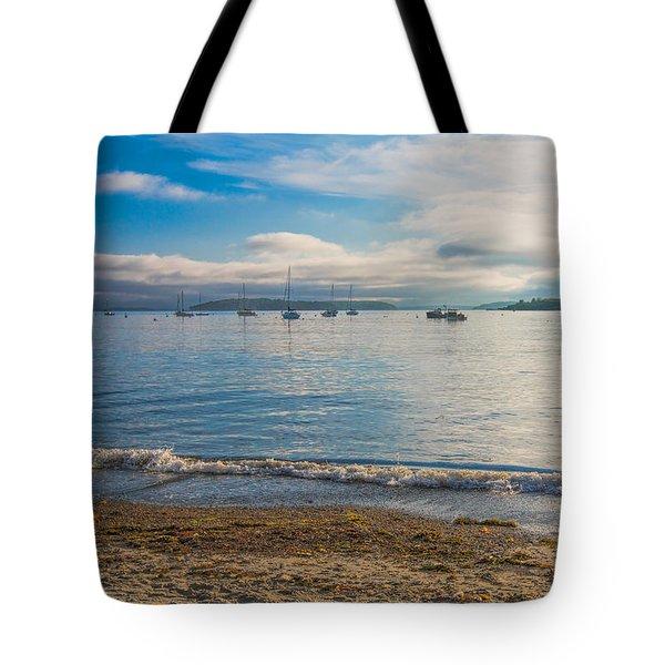 Tote Bag featuring the photograph Willard Beach by Kim Wilson
