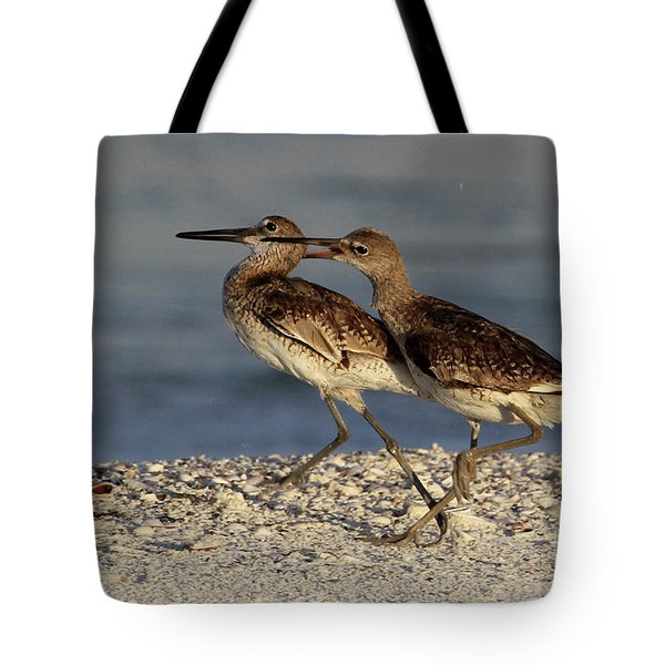 Willet Fight Tote Bag