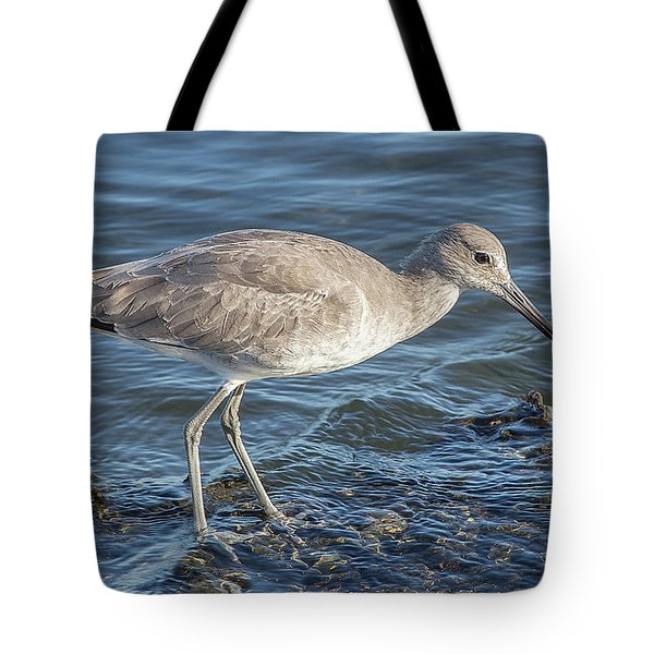 Willet In Winter Plumage Tote Bag