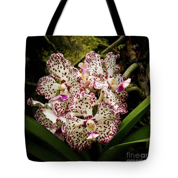 William And Catherine Tote Bag