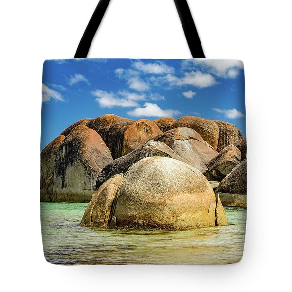 William Bay Tote Bag