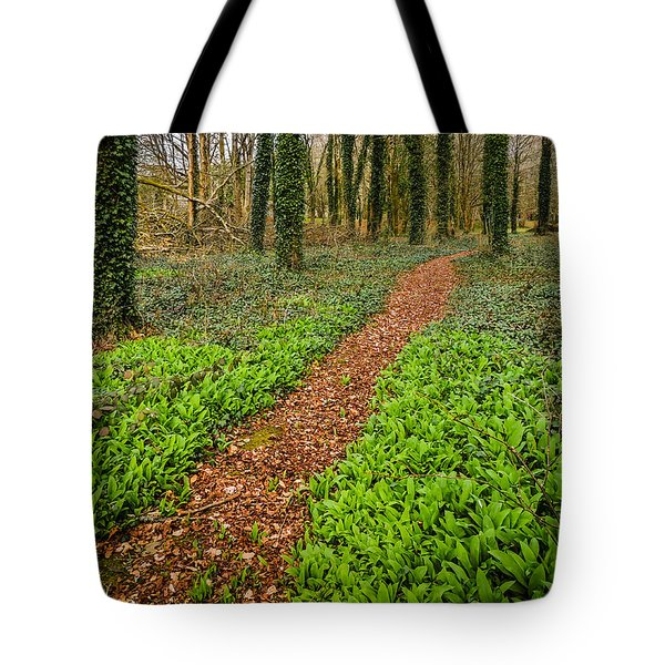 William Butler Yeats Woods Of Coole Park Tote Bag