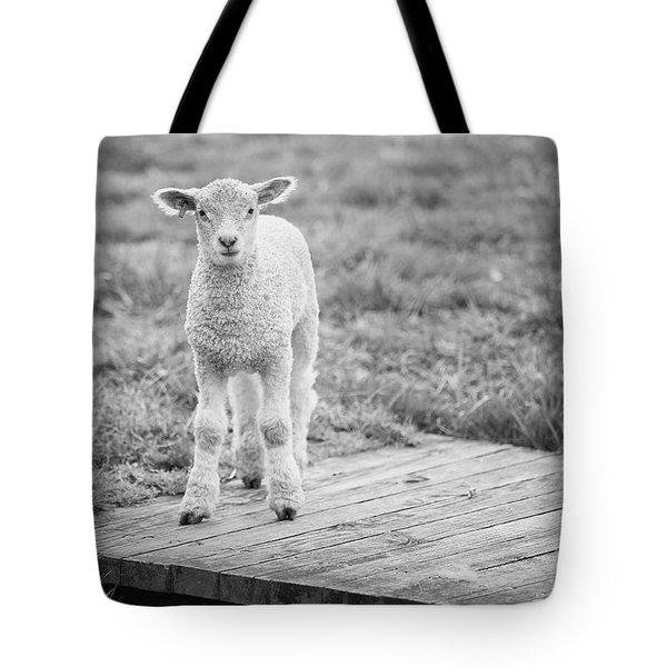 Williamsburg Lamb Tote Bag