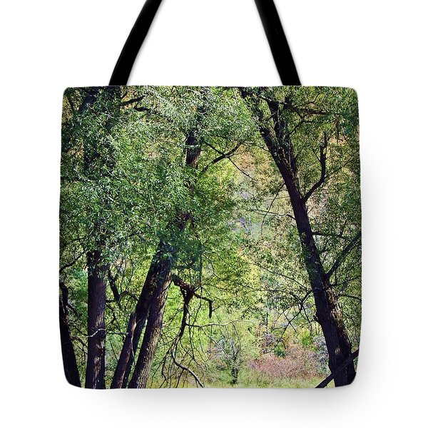 Willow Cathedral Tote Bag