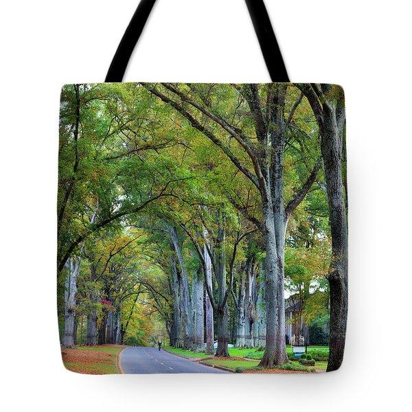 Willow Oak Trees Tote Bag