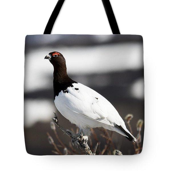 Willow Ptarmigan Tote Bag