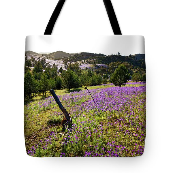 Willow Springs Station Tote Bag by Bill Robinson