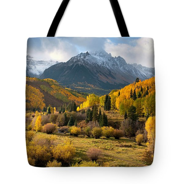 Willow Swamp Tote Bag