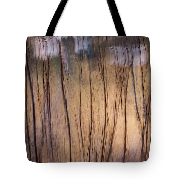 Willows In Winter Tote Bag