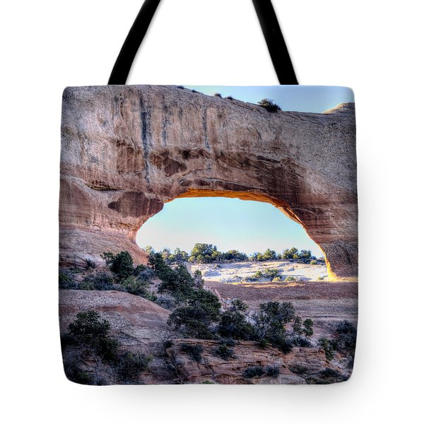 Wilson Arch In The Morning Tote Bag by Alan Toepfer