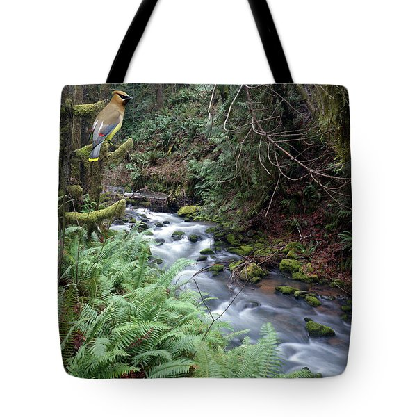 Tote Bag featuring the photograph Wilson Creek #14 With Added Cedar Waxwing by Ben Upham III