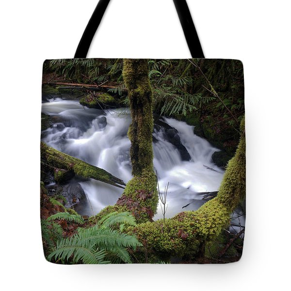 Tote Bag featuring the photograph Wilson Creek #16 by Ben Upham III