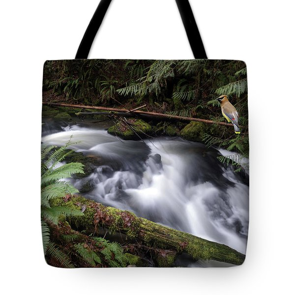 Tote Bag featuring the photograph Wilson Creek #18 With Added Cedar Waxwing by Ben Upham III