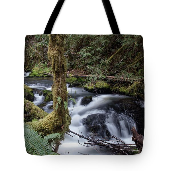 Tote Bag featuring the photograph Wilson Creek #25 by Ben Upham III
