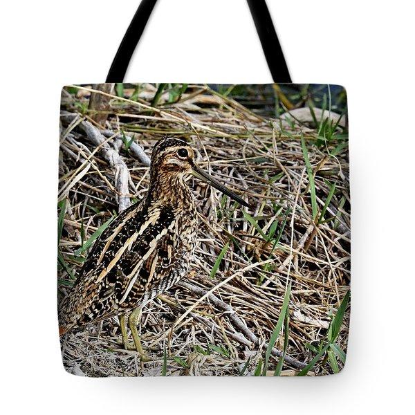 Wilson's Snipe Tote Bag