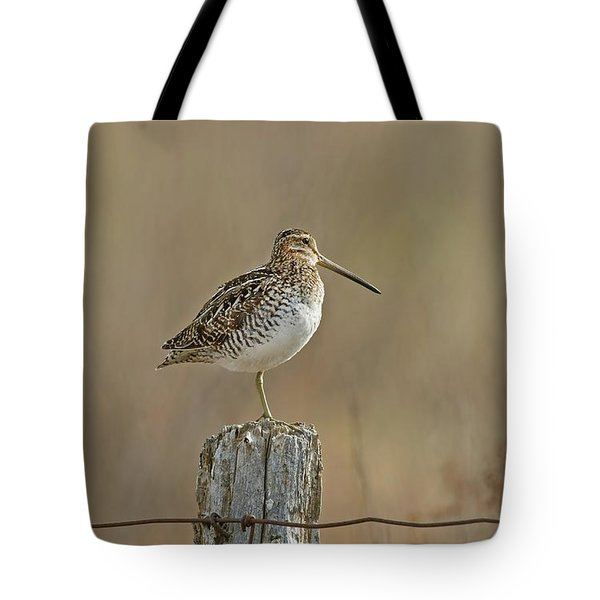 Wilson's Snipe On A Post Tote Bag