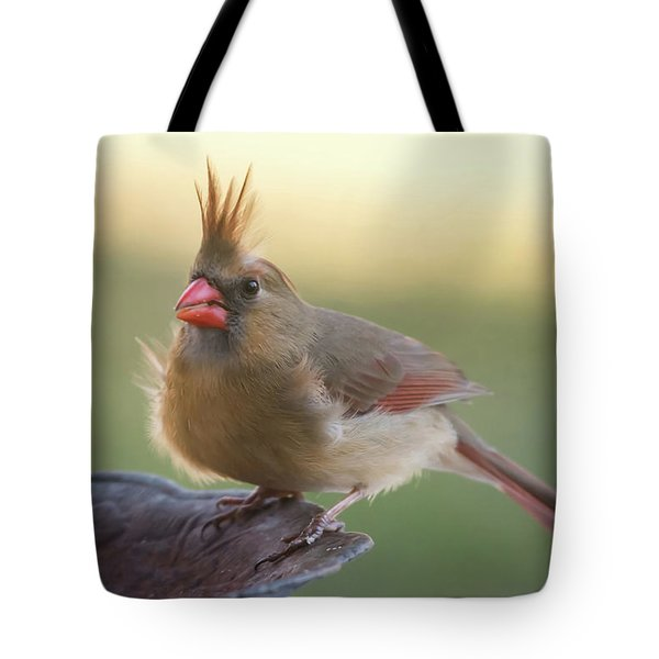 Tote Bag featuring the photograph Wind Blown Cardinal  by Terry DeLuco