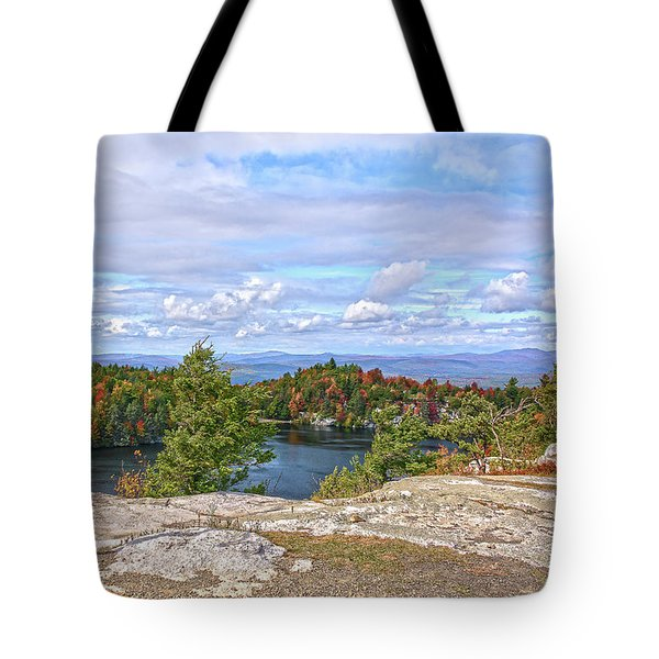 Wind Blown Tree In Autumn Tote Bag